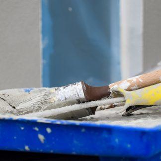 נלווים לצבע